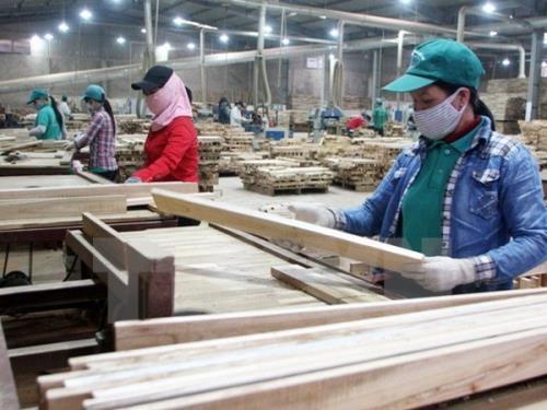 Nhiều cơ hội cho ngành gỗ Việt Nam từ nhu cầu thị trường thế giới