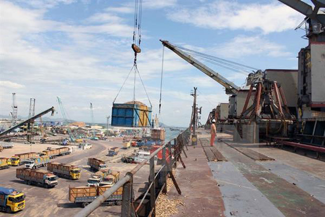 Gỗ xuất khẩu tắc cứng tại cảng Quy Nhơn